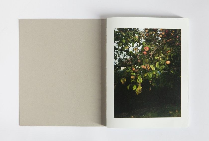 © Tommaso Tanini, 25x19 cm, 120 pages, concept and design by Discipula, colour & b/w on Tatami paper, swiss binding, soft cover,offset printing, edition of 800, Discipula Editions, 2014
