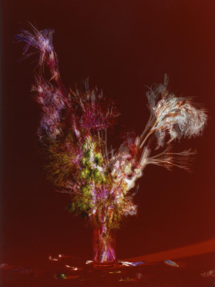 © Nádia Rodrigues Ribeiro, 215 Hours, 2013, Diasec Print 80x60 cm