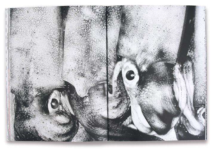 © Taku Onoda, 24.4 cm x 32.5 cm, 64 pages, edition of 1000, 2014