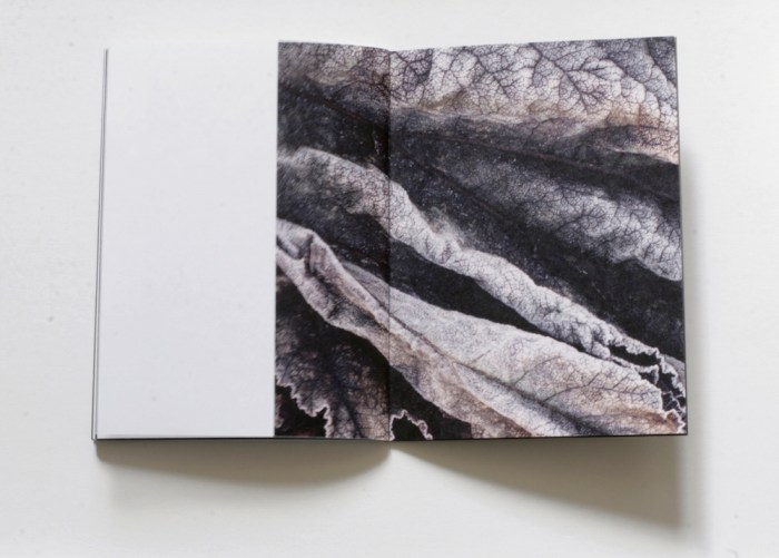 © Anna Block, 14x19.5 cm, 36 pages + cover with a manually made mark, all copies are manually stitched, signed and numbered by the author, edition of 100