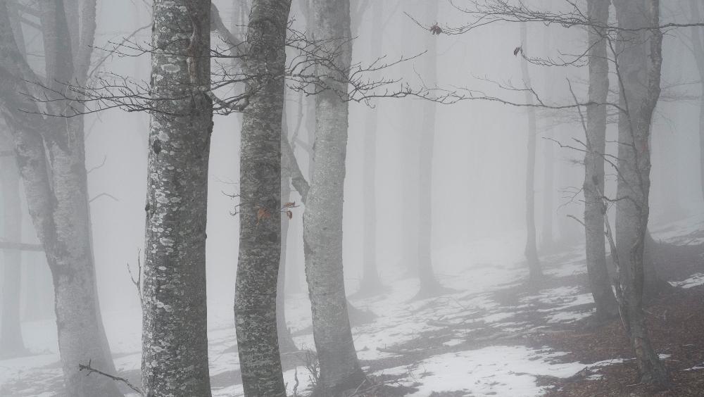 Andrea Papi italy online phosmag photography magazine