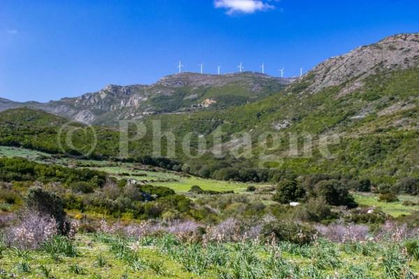 La pointe de Torricella, dans le Cap Corse en bivouac