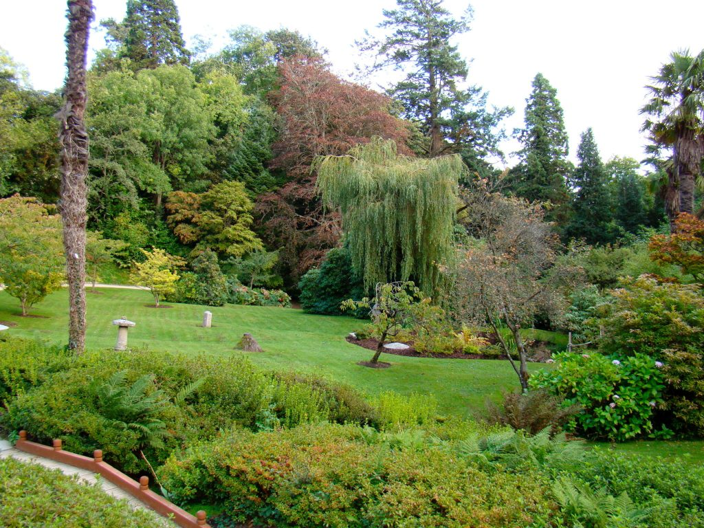 Japanese Gardens at Powerscourt Estate