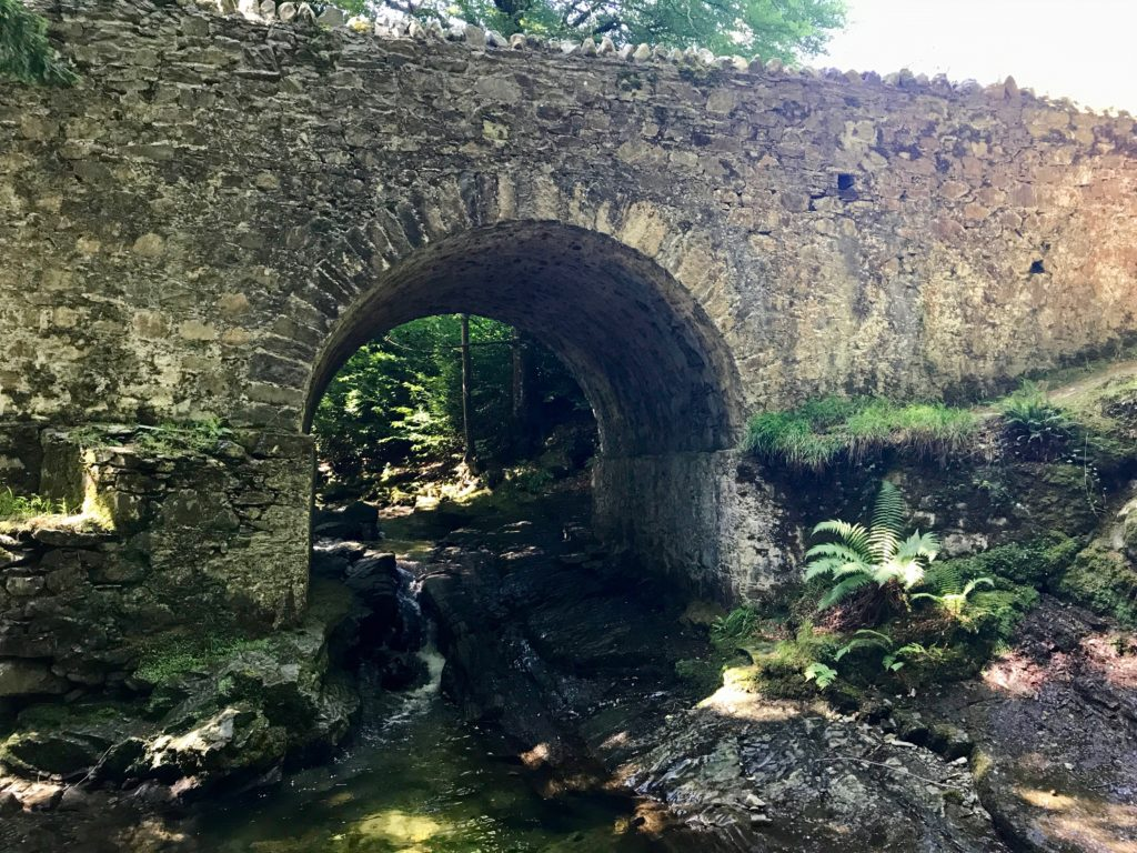 Tollymore Forest Park, Game of Thrones Location, Haunted Forest, North of the wall, Wolfswood, Castle Black, Dreadfort, wolfs wood, direwolf pups, starks