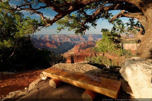 Moment de sérénité assis au bord du Grand Canyon (Bright Angel Point, North Rim, Arizona, USA).