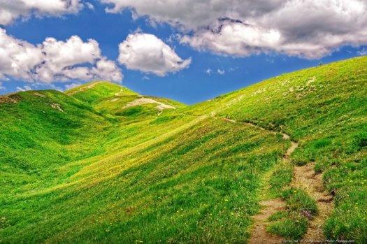Cette colline ondulée, verdoyante et fleurie, traversée par un sentier de randonnée, sous un ciel bleu parsemé de quelques nuages blancs, est un de mes paysages d'été préférés, photographié dans le parc national du Mercantour, au niveau du col d'Allos (2248m d'altitude).