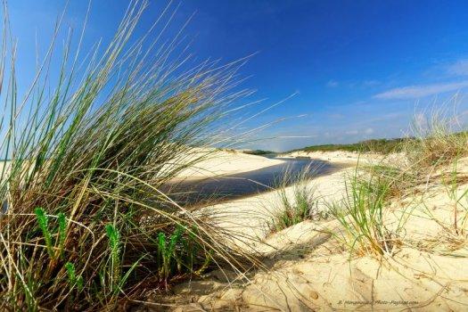 Juste avant d'arriver à son embouchure, le courant d'Huchet longe le littoral en passant entre les dunes.