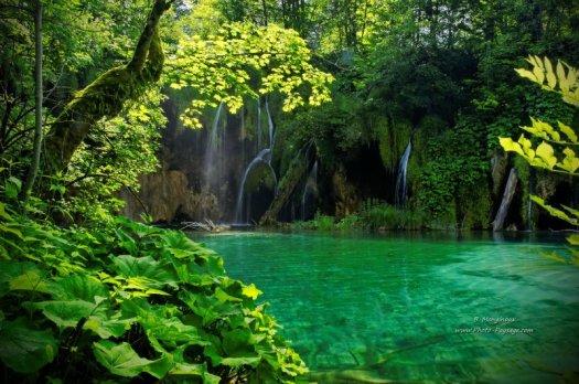 Cascades paradisiaques : les Lacs de Plitvice