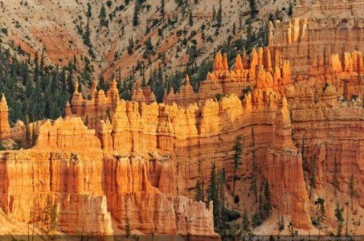 Bryce Canyon, dans l'Utah. Un parc national incontournable, avec de nombreux points de vues sur les