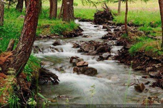 Rivière de montagne dans le pays des Ecrins (Hautes-Alpes)