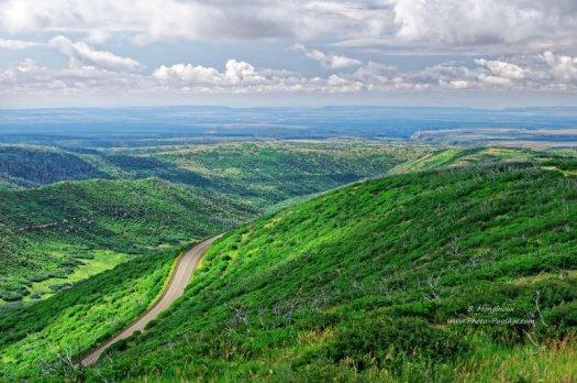 Une route sur les flancs d'une colline verdoyante, avec en arrière plan les paysages immenses du parc national de Mesa Verde.