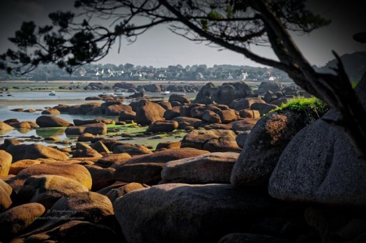 Vue sur les rochers de la côte de granit rose à marée basse. Photo prise depuis la presqu'île Renote (Trégastel, Côtes-d'Armor, Bretagne)