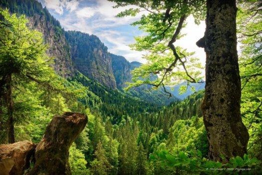 Traversez le pont qui surplombe la cascade d'Ardent, et vous aurez droit à un magnifique point de vue sur la vallée.