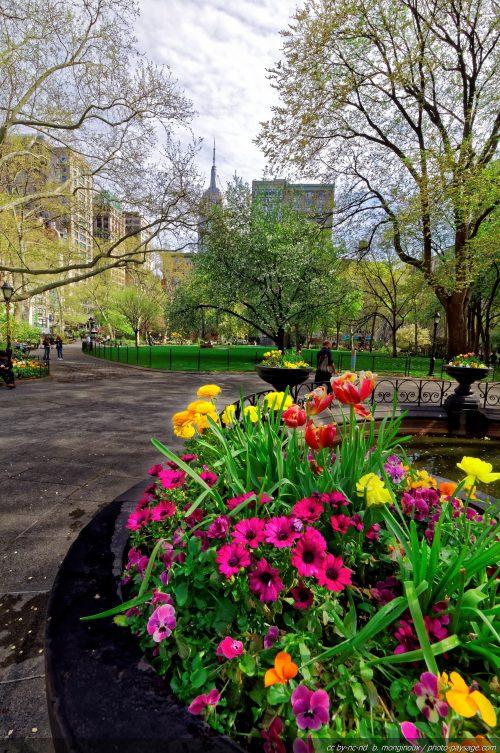 Le printemps à Madison Square park