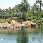 تعبير عن النيل نهر من انهار الجنة بالعناصر