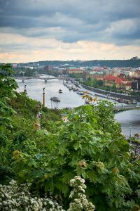 Internationaler Fotowalk Prag-077
