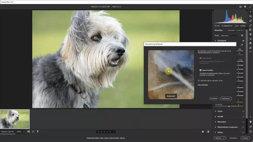 Superresolutie in Adobe Camera Raw, een screenshot uit de video die ik voor Photofacts heb opgenomen.