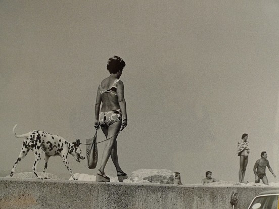 Photography Exhibition | Shirley Baker