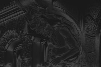 kaiser-friedrich-ring - PHOTOGALERIE WIESBADEN - dunkel-schwarz