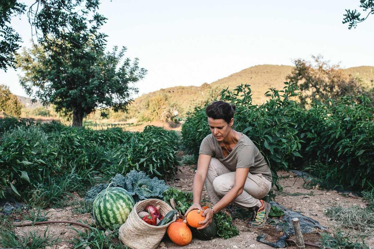 Fotografía de Marina recolectando las verduras de su huerta Can Puvil de Ibiza