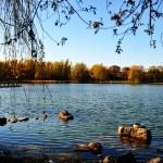 Lake of Toogood Pond Markham Toronto