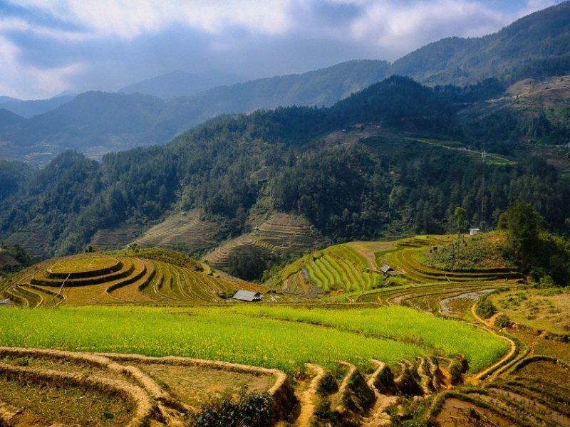 northern vietnam ricefields near mu cang chai