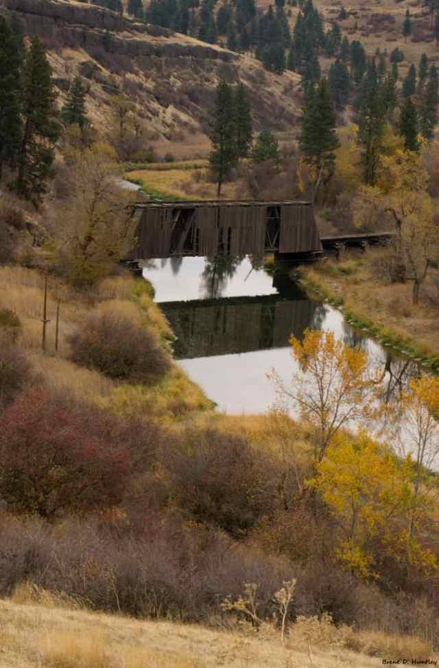 Manning-Rye Covered Bridge 5