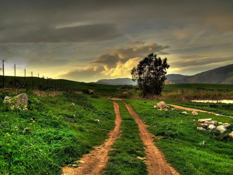 الريف النموذجي