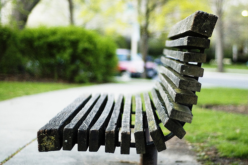 oakparkbench by paul goyette