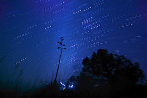 Star Trails over the South Rim