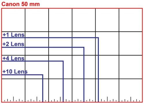 • Comparison Graph •