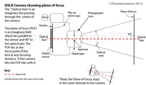 • Plane of Focus •