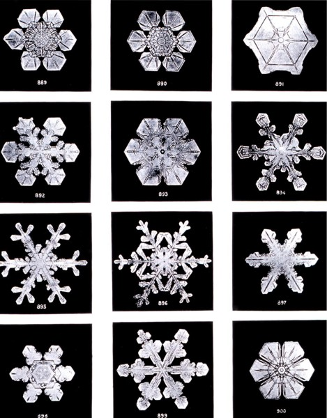"Snowflake photographs by Wilson ""snowflake"" Bentley"