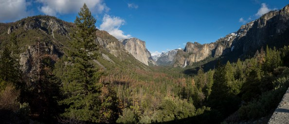 Panorama shot of the valley in Yosemite Park, California