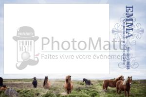 Thème photobooth borne photo selfie photomatt cheval communion paysage