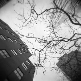 201202-newyork011