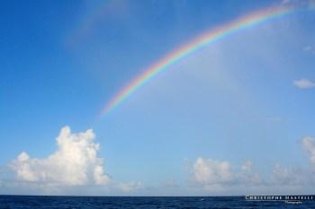 christophe-mastelli-photographe-167.jpg