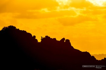 christophe-mastelli-photographe-181.jpg