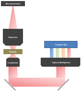 Schematic of a quantum cascade laser (QCL) microscope.