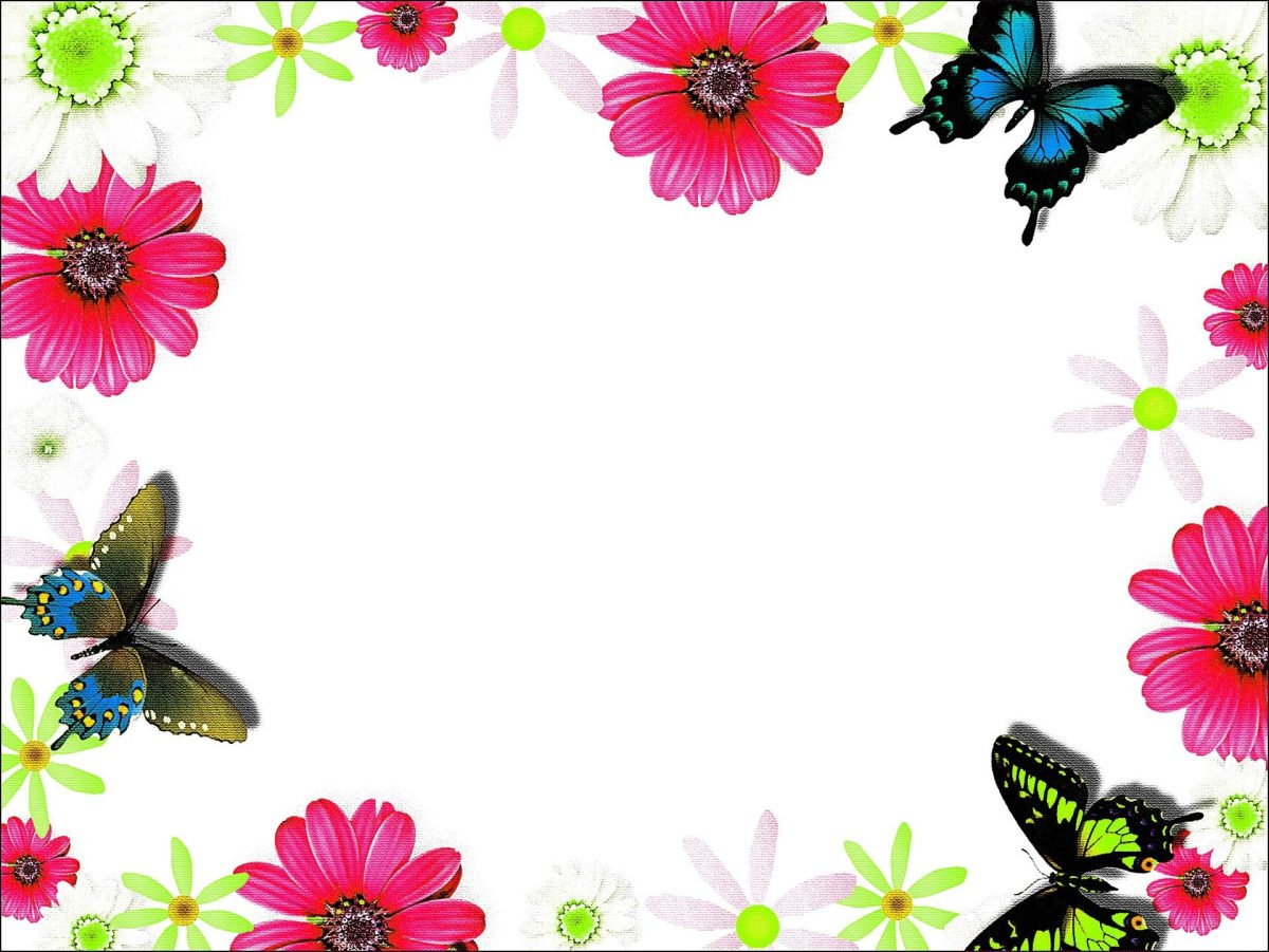 Colorful flower frame border