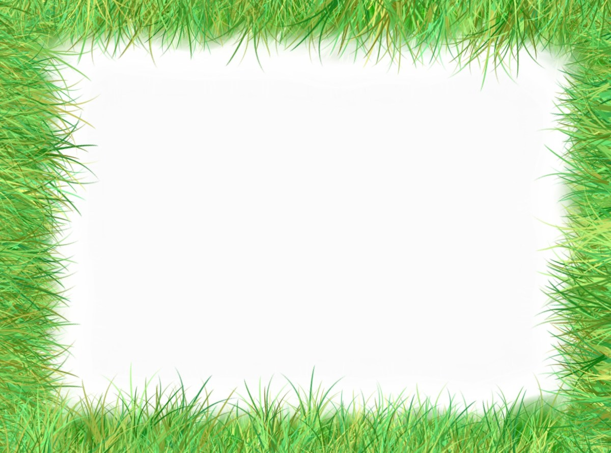 Grass frame green