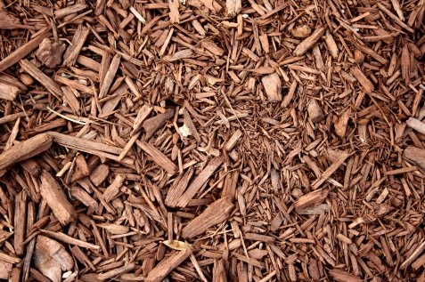 Close-up of wood mulch
