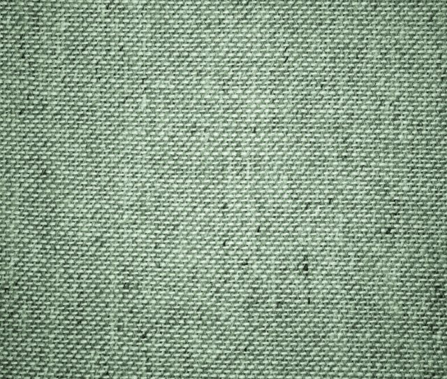 Sage Green Upholstery Fabric Close Up Texture
