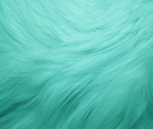 Teal Fur Texture