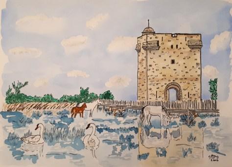 Encre de chine et aquarelle, chevaux et cygnes devant la Tour Carbonnière