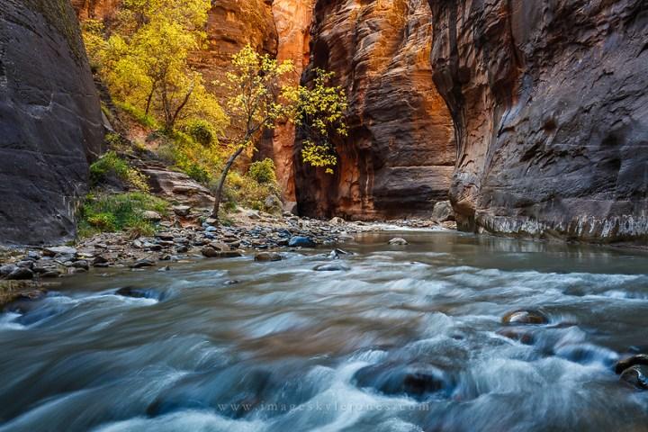 Zion National Park, Utah (Kyle Jones)