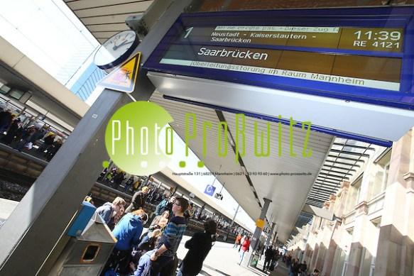 """Mannheim. 11.03.15 Wegen einer Oberleitungsstörung war der Zugverkehr am Hauptbahnhof Mannheim zwischen 11.40 Uhr und 13 Uhr am Mittwoch stark beeinträchtigt. Seit 13 Uhr können die Züge wieder """"in vollem Umfang über Mannheim Hauptbahnhof"""" fahren, teilte die Deutsche Bahn am Nachmittag mit. Seit 13 Uhr normalisiert sich der Bahnverkehr im Mannheimer Hauptbahnhof wieder. Erfahrungsgemäß wird es allerdings noch einige Zeit brauchen, bis der für knapp 80 Minuten unterbrochene Verkehr wieder planmäßig läuft. Laut Bahn hatte ein """"größerer Vögel"""" für einen Kurzschluss in der Oberleitung im Bereich von Nebengleisen am Hauptbahnhof gesorgt. Der Kurzschluss wiederum habe zum Abreißen der Leitung geführt, teilte die Bahn mit.  Bild: Markus Proßwitz 11MAR15 / masterpress (Bild ist honorarpflichtig) (Markus Prosswitz / masterpress)"""