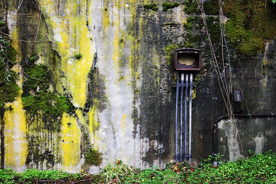 Rusty electrical box on moss and algae coverred concrete bunker wall, Artillery Hill, Fort Warden State Park, Port Townsend, Washington, USA (Brad Mitchell)