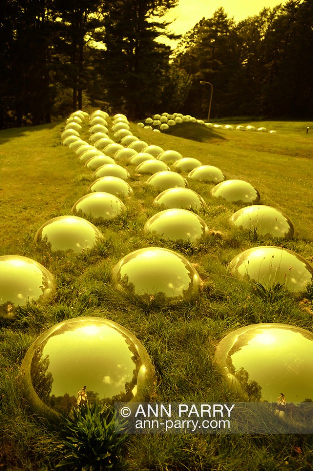 "Roslyn, New York, U.S. July 7, 2019. [NOTE: YELLOW filter added to image]  ""Vertebrate Progression (Field Totem)"" outdoor sculpture of domed mirrors was created and installed by artist Marko Remec near the Manes Center at the Nassau County Museum of Art, which commissioned the work. (© 2019 Ann Parry/Ann-Parry.com)"