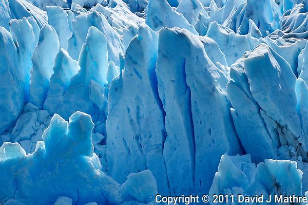Los Notros, Glacier (David J Mathre)